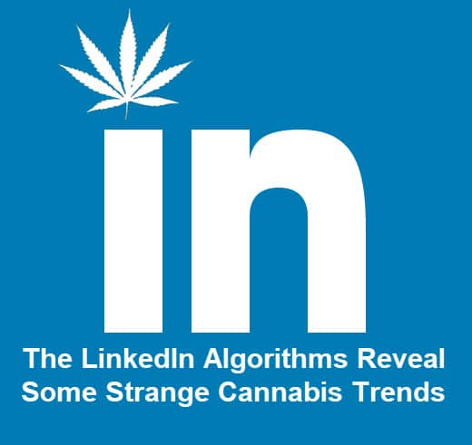 How to Grow Your Cannabis Brand with Digital Marketing