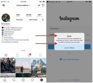 Shut down cannabis Instagram profile