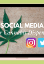 5 tips for cannabis marketing blog cover