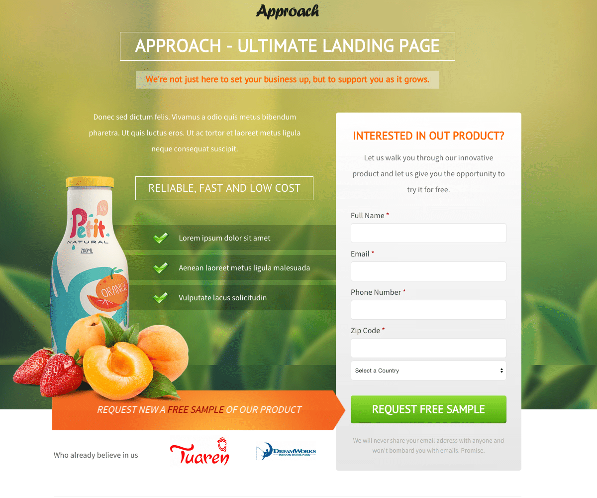 Example of lead generation landing page.